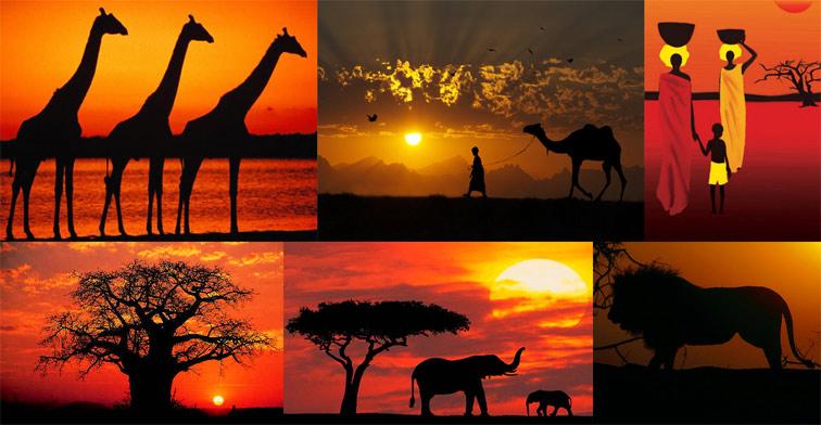 Африканские истории