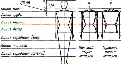 урок 7 снятие мерок особенности телосложения уроки по вязанию