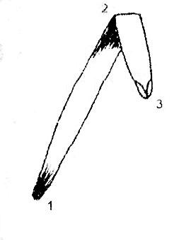 Вышивка лентами - изогнутый прямой стежок